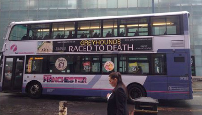 Bus with Greyhound advert